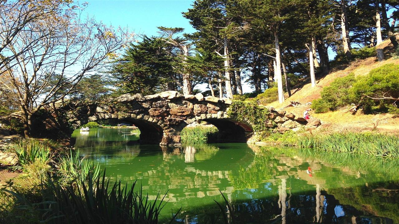 1280x720 Beautiful Travel Place Golden Gate Park Park in San Francisco California Photo