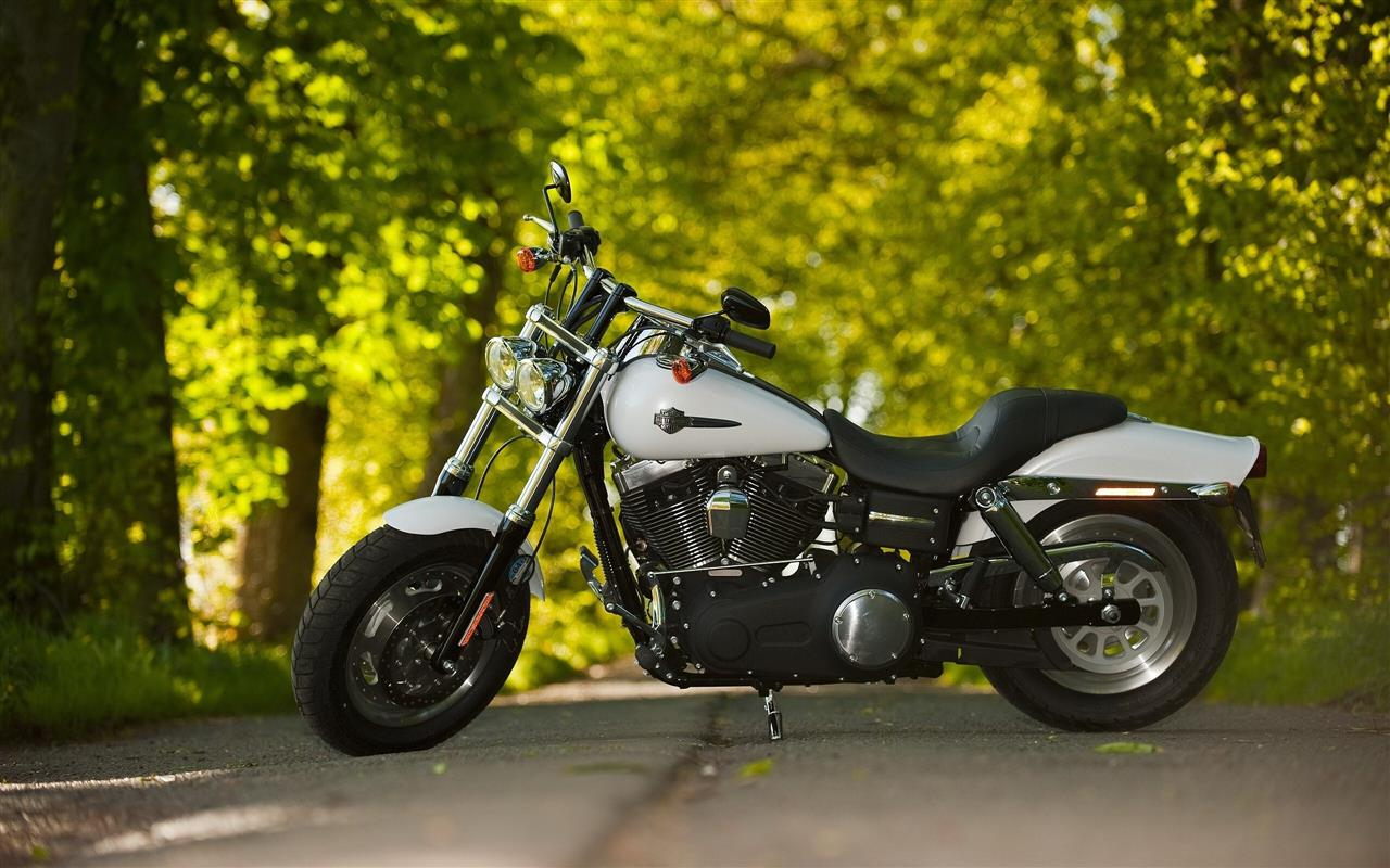 1280x800 Black and White Harley Davidson Bike on Road HD Wallpapers