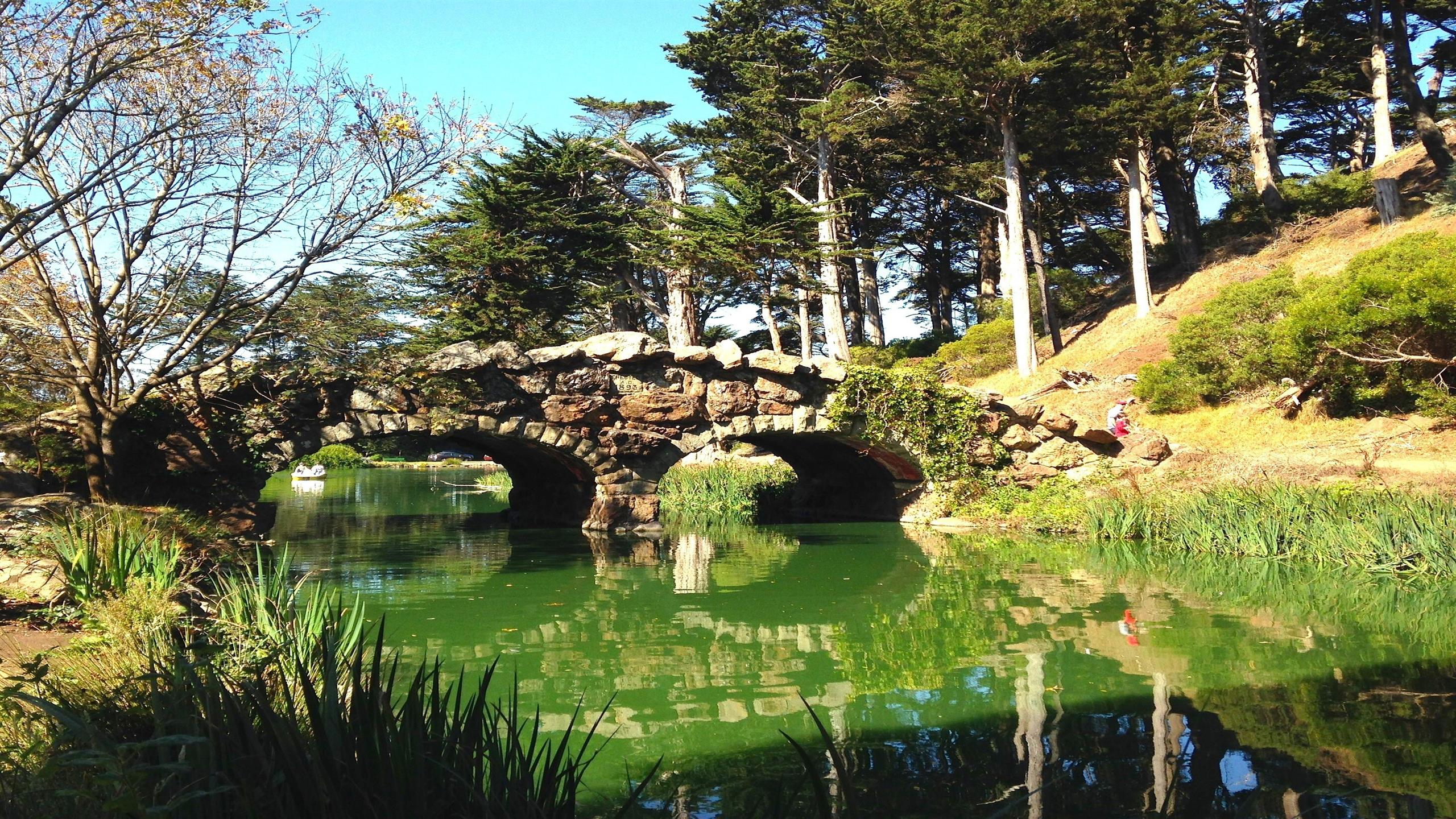 2560x1440 Beautiful Travel Place Golden Gate Park Park in San Francisco California Photo