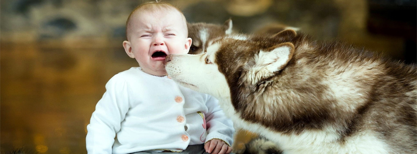 Crying Baby with Dog FB Cover Photo