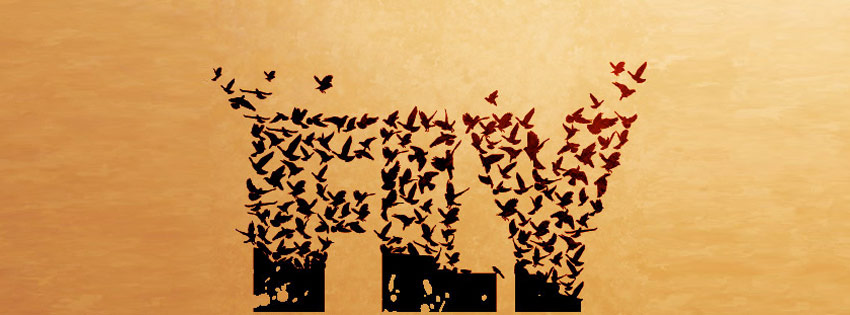 Flying Bird Text Facebook Timeline Cover Wallpaper