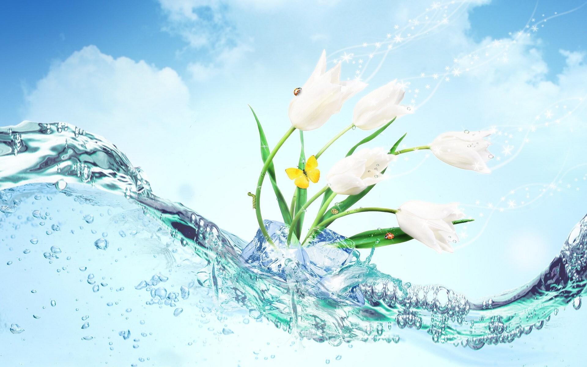 Flower Water Wide