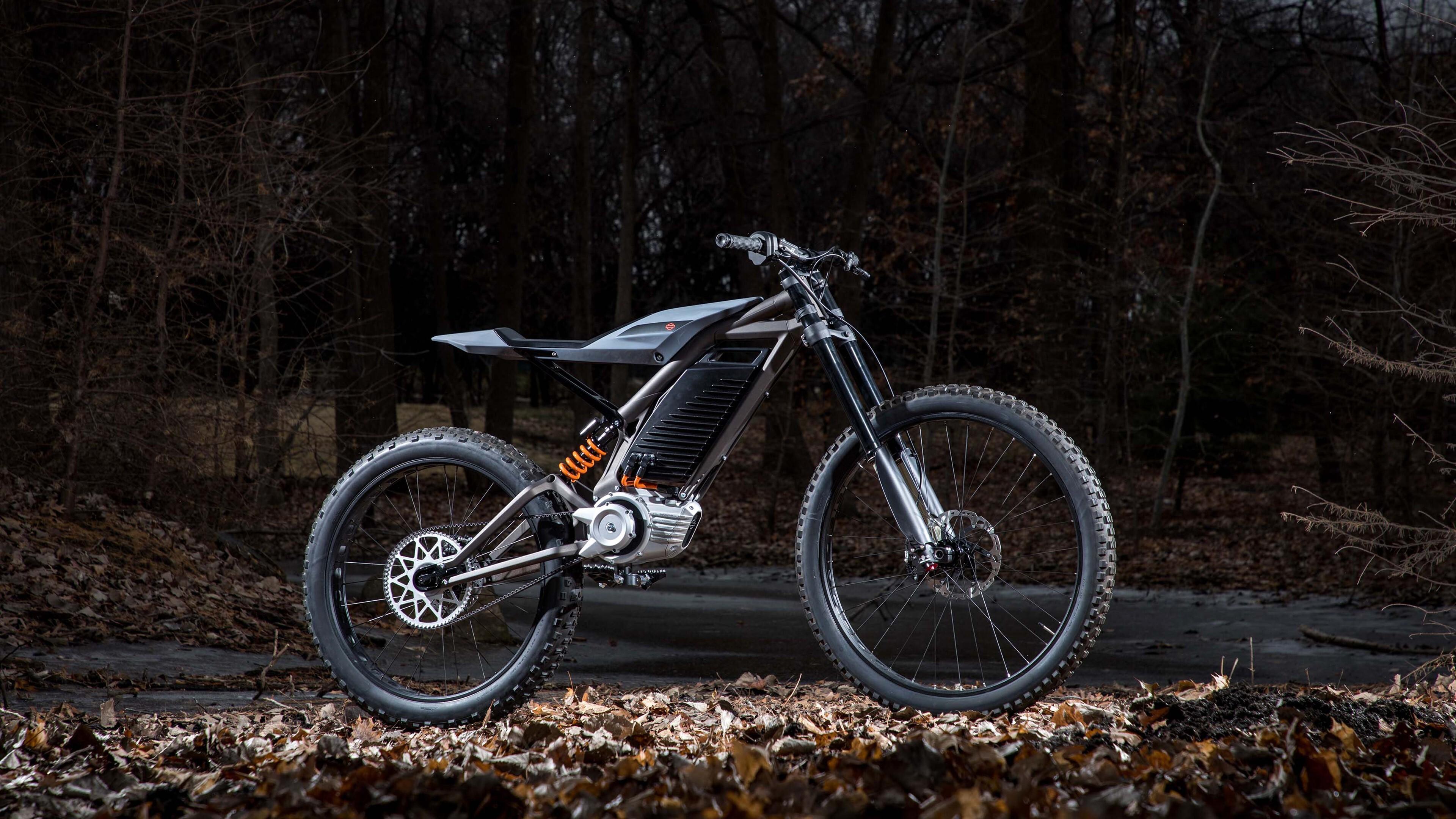 Awaited 2020 Harley Davidson Electric 4K Bike