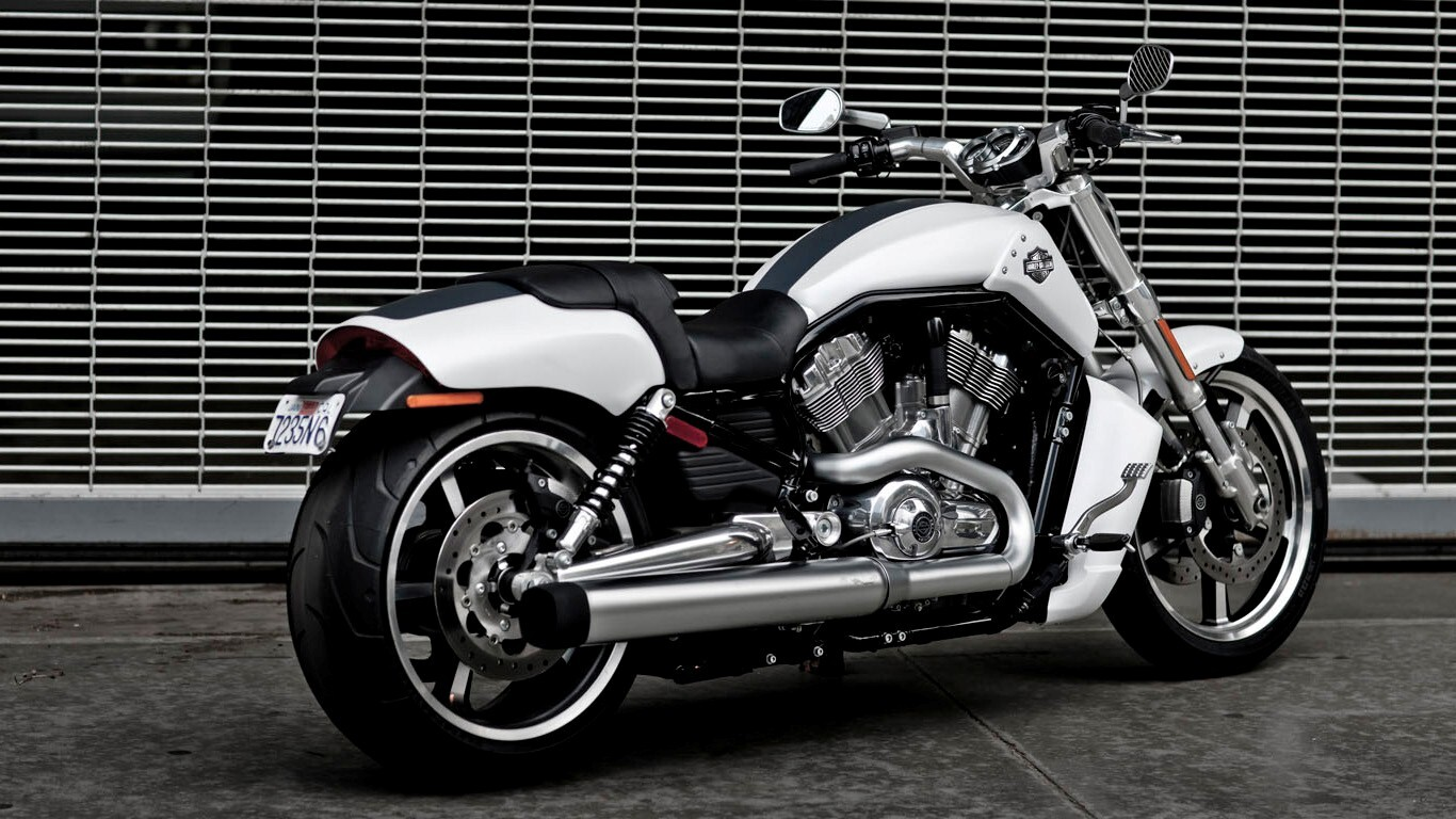 harley davidson v rod muscle white motorcycle hd wallpapers. Black Bedroom Furniture Sets. Home Design Ideas