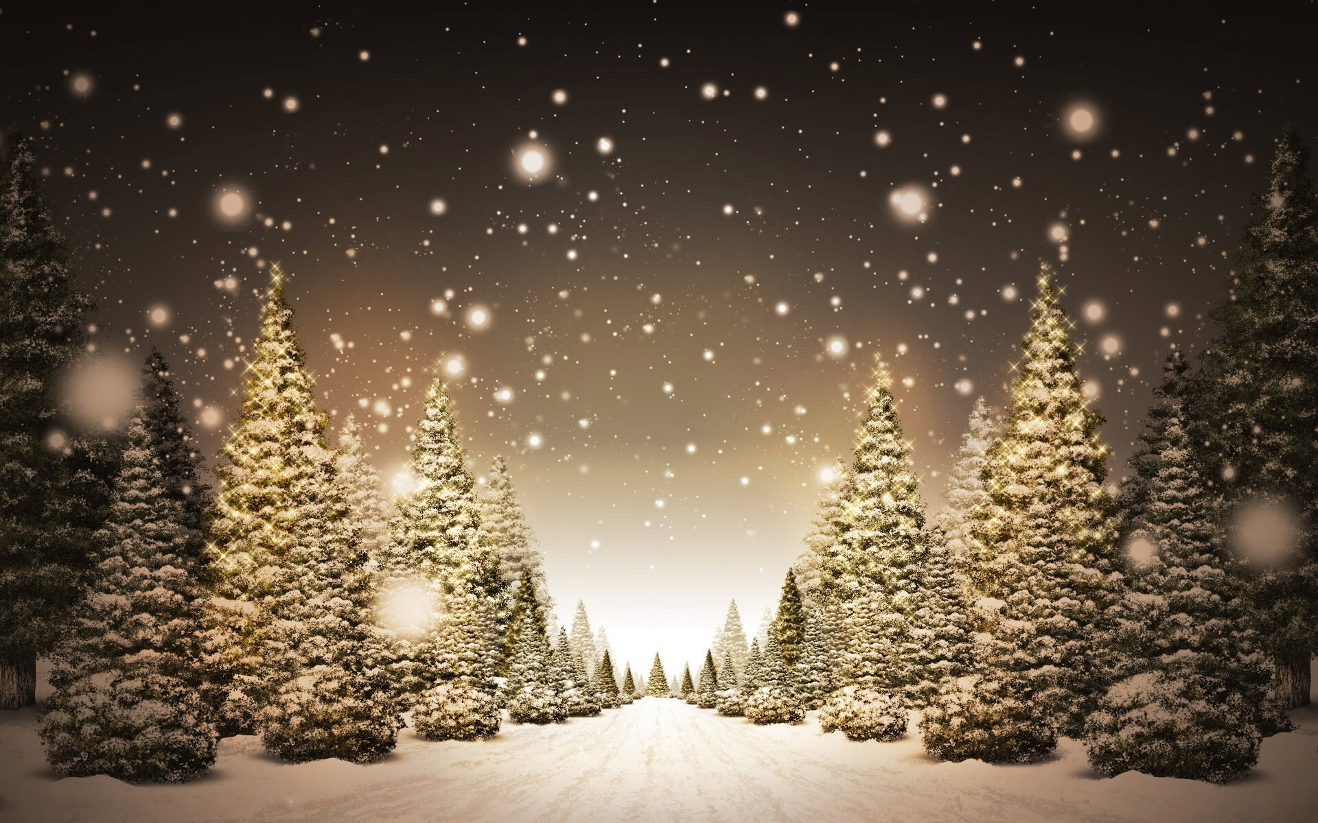 amazing beautiful christmas trees wallpaper | hd wallpapers