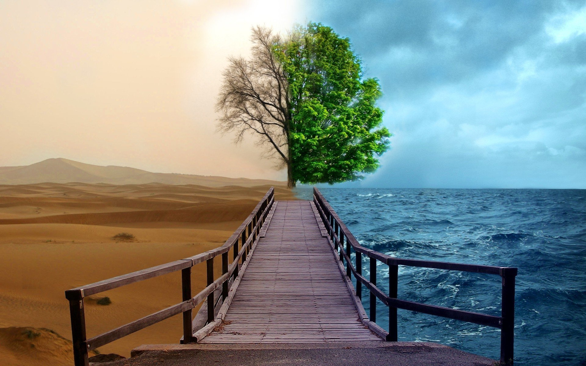 creative nature hd wallpapers | hd wallpapers