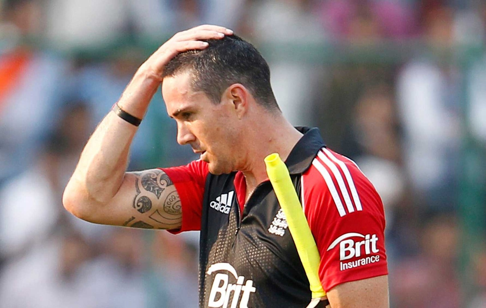 Kevin Pietersen Hd Wallpapers Images Pictures Photos Download