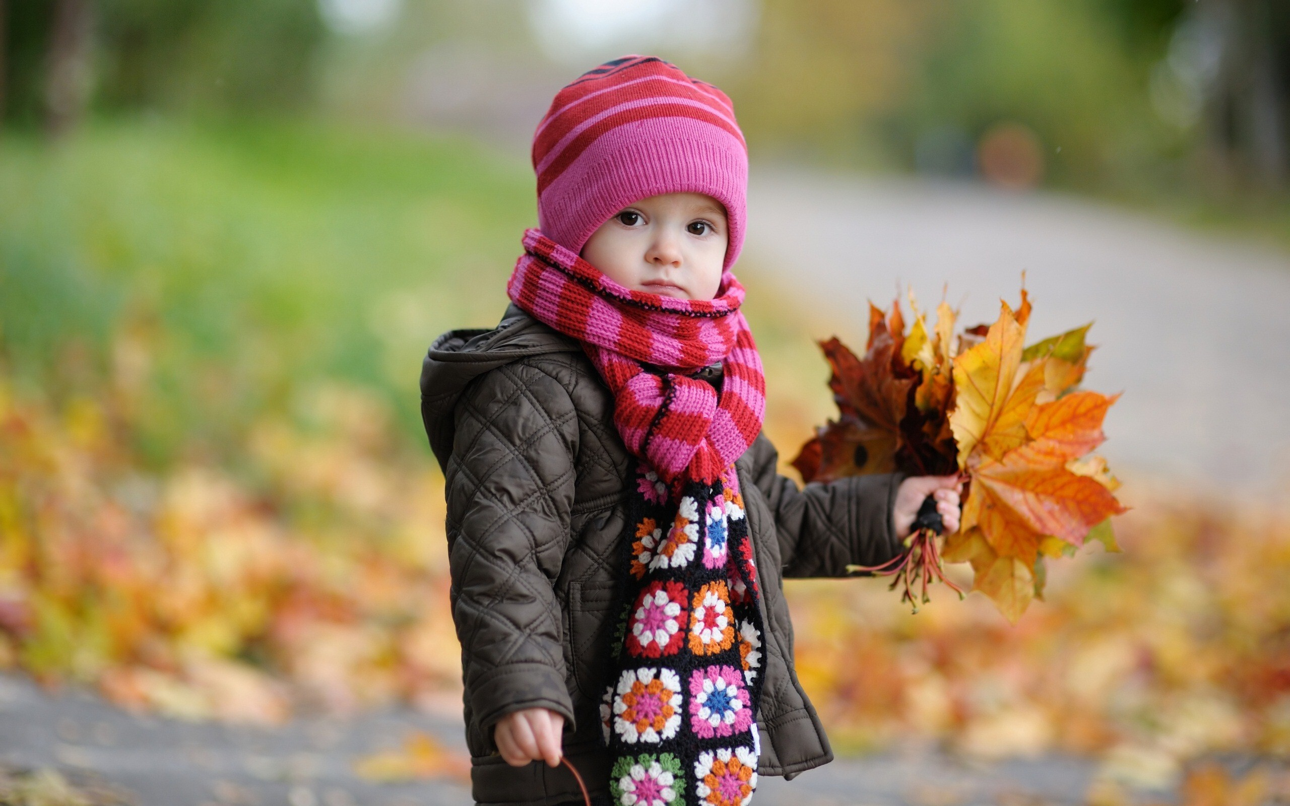 beautiful baby girl in autumn | hd wallpapers