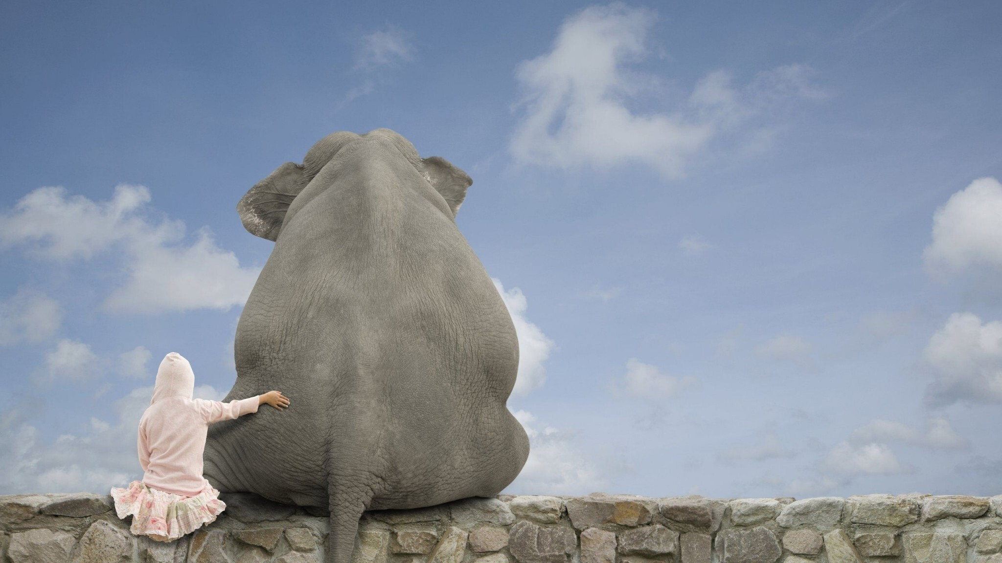 Must see Wallpaper Home Screen Elephant - Baby_Seatting_Near_Big_Elephant_Funny_Wallpapers  Collection_704179.jpg