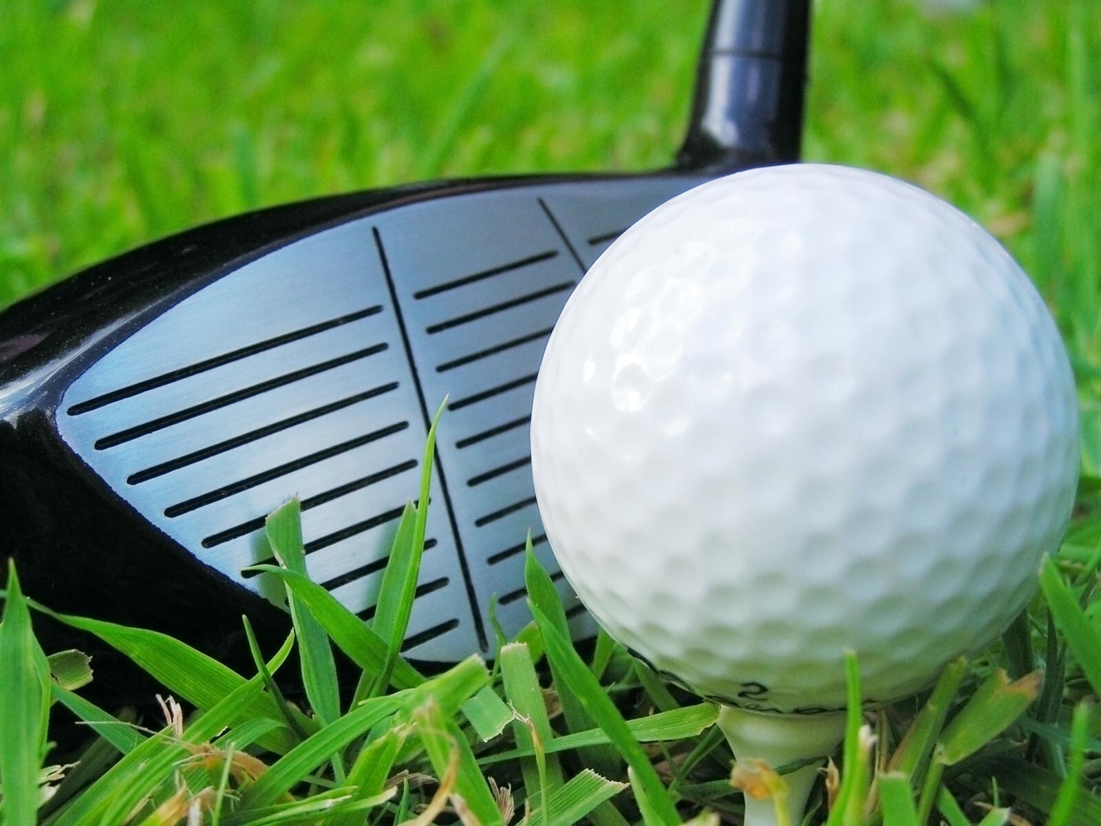 Looking For Golf Ball In Target Wallpapers