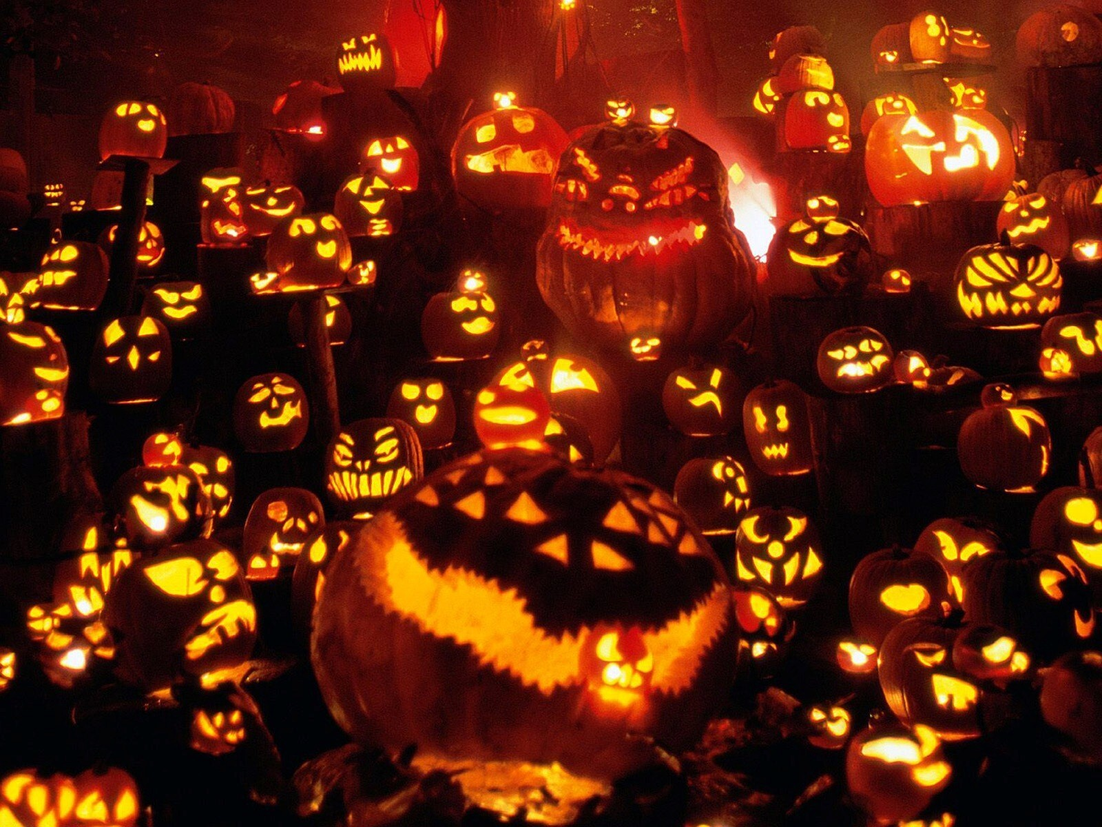 Halloween Pumpkin Wallpaper Hd.Halloween Pumpkins Festival Hd Wallpaper Hd Wallpapers