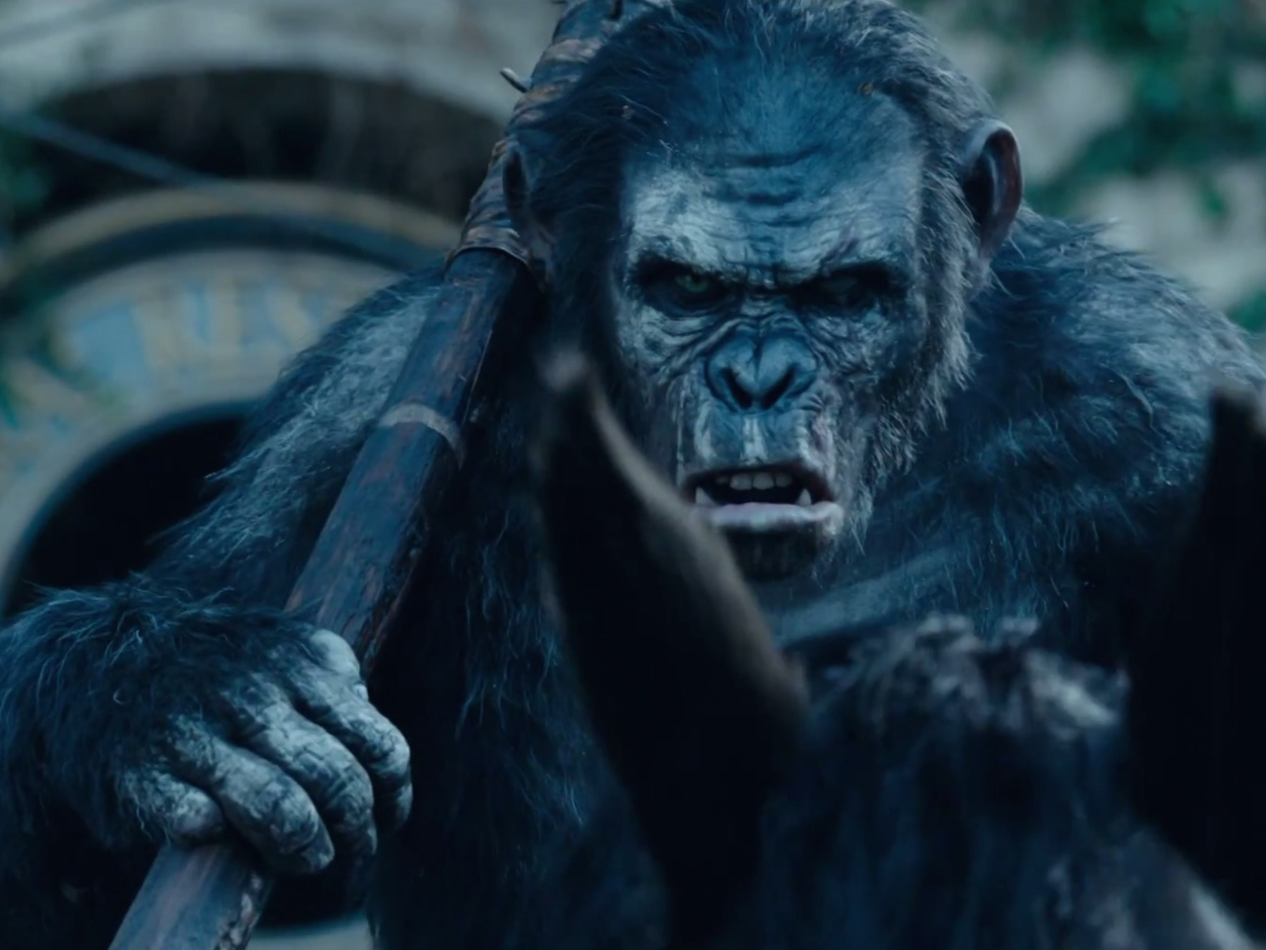 dawn of the planet of the apes movie hd wallpaper of gorilla | hd