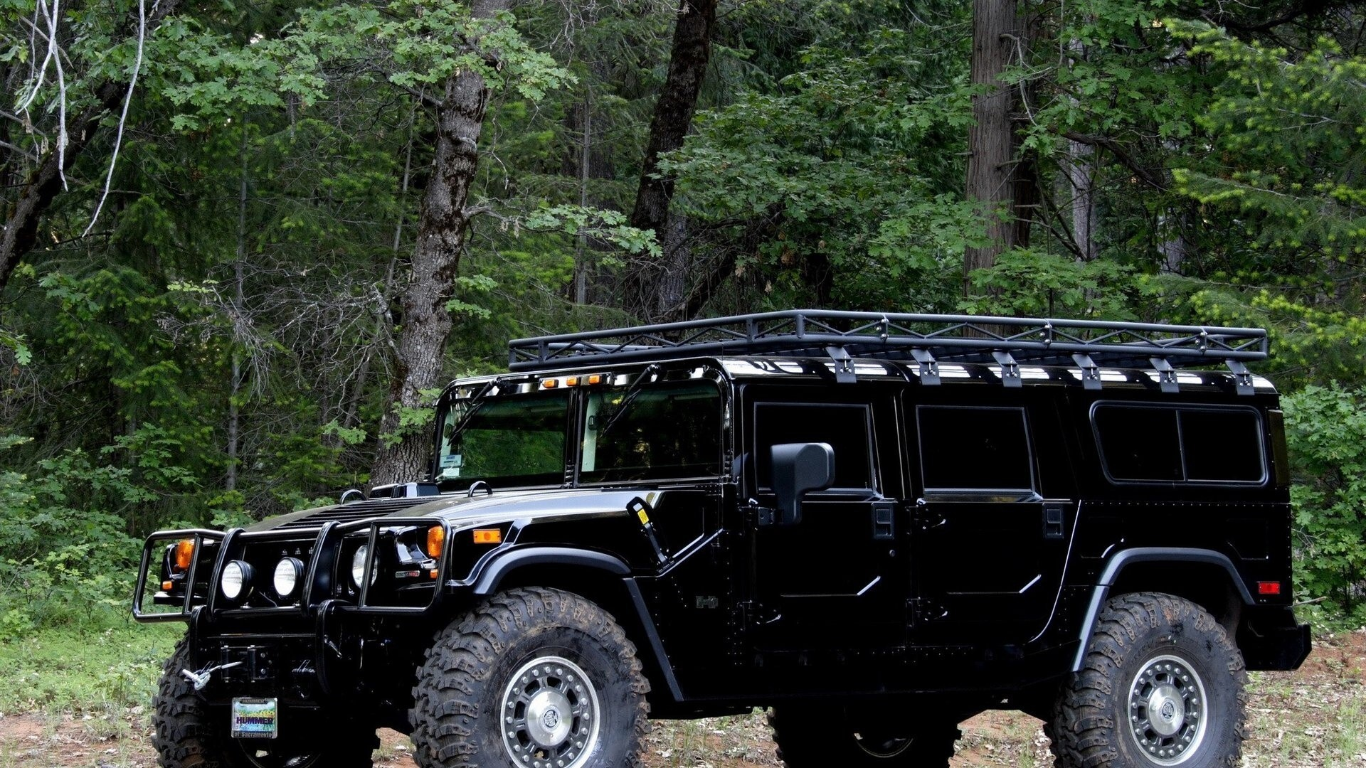Forest Hummer H1 HD Car Wallpapers | HD Wallpapers