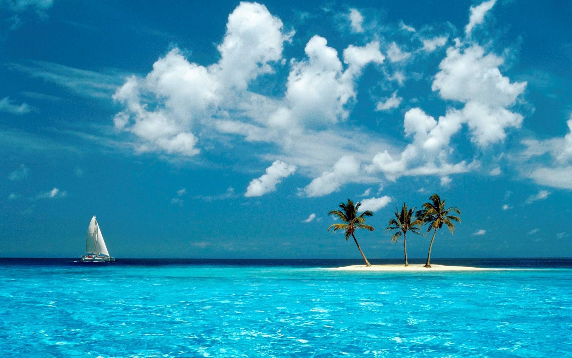 Beautiful Coconut Trees In Small Island Wallpaper