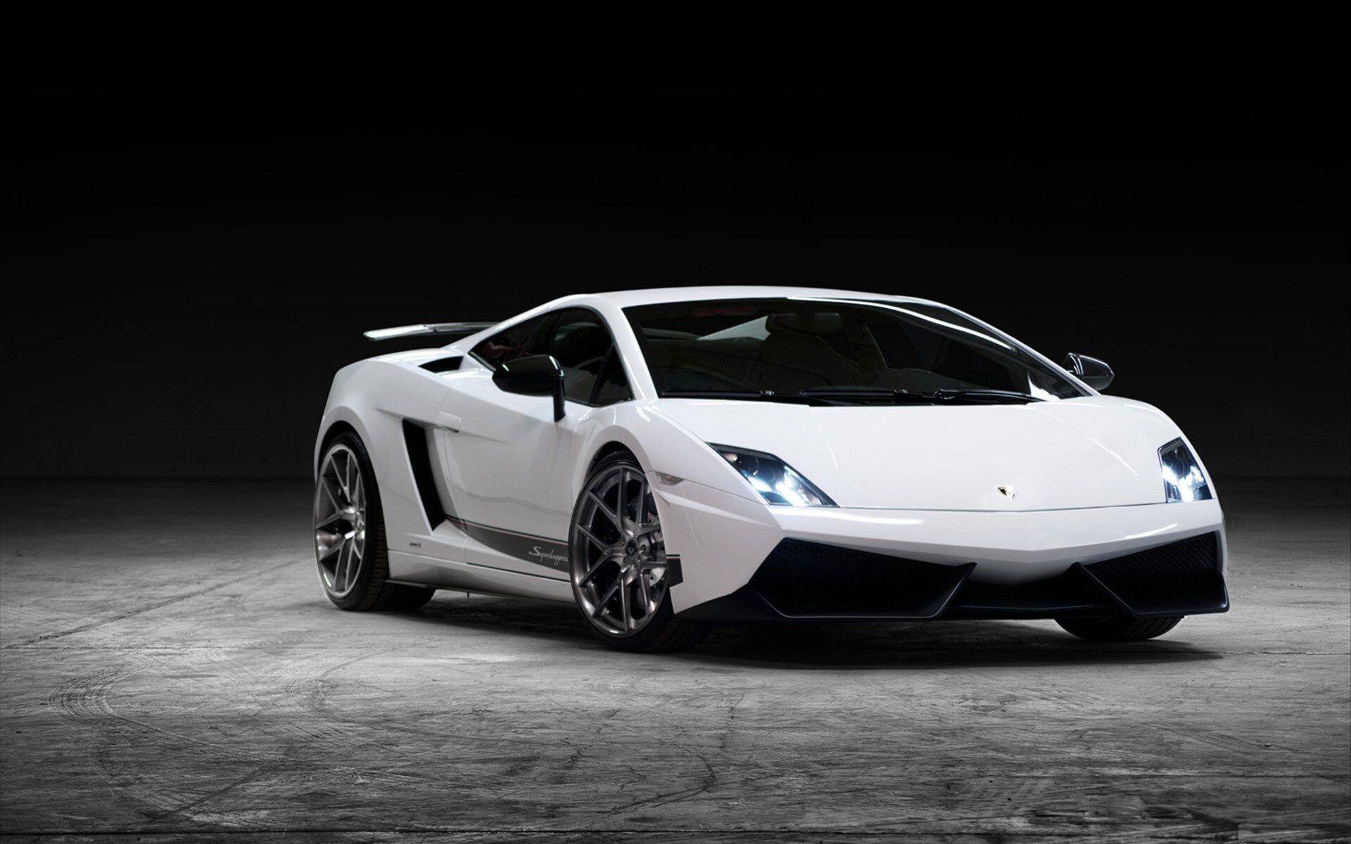 White Lamborghini Gallardo Car Wallpapers