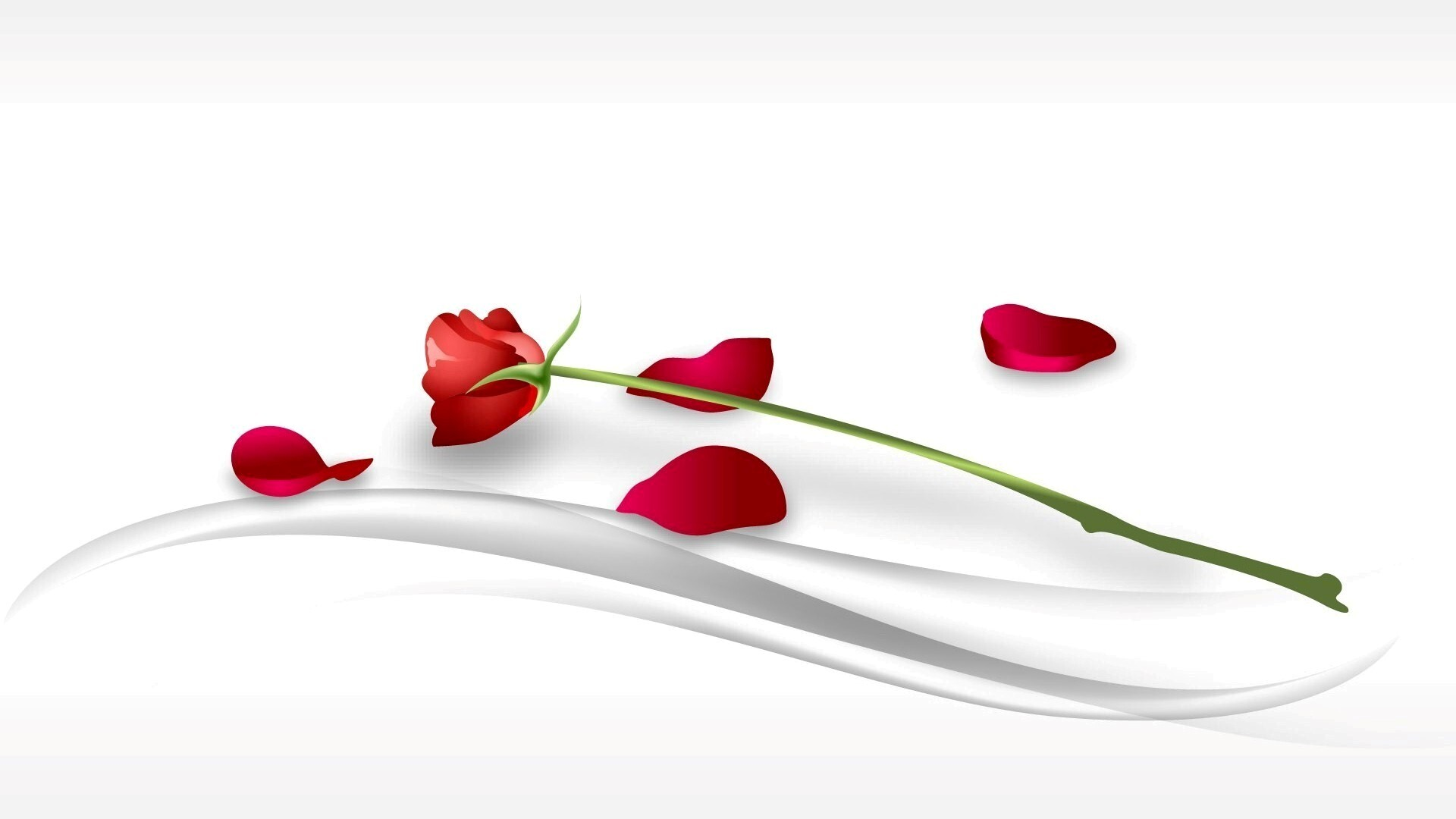Symbol Of Love Red Rose Hd Wallpapers