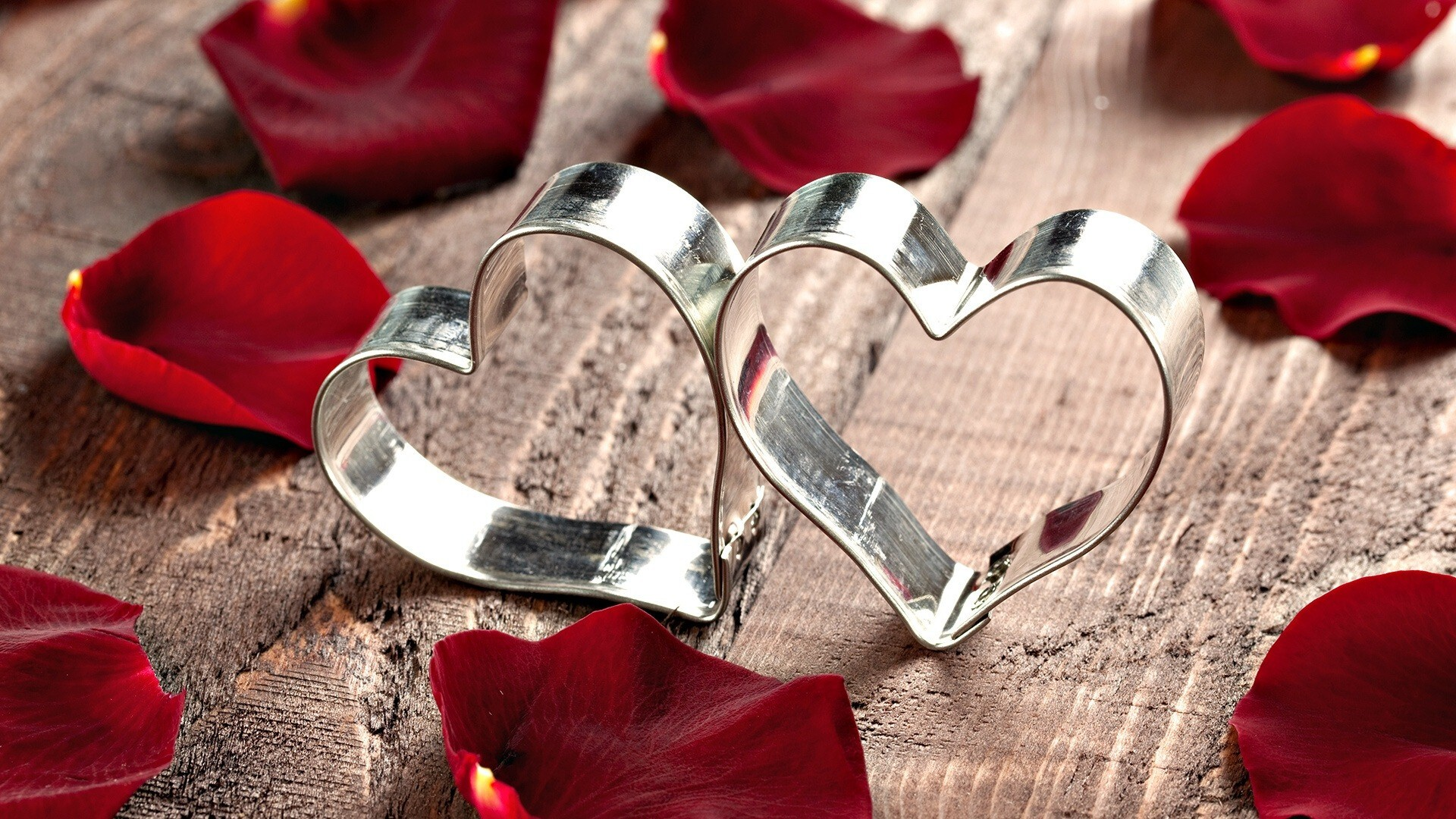 two heart rings love wallpaper | hd wallpapers