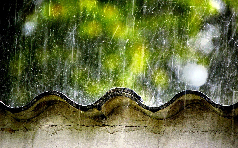Rainy Season Hd Wallpaper Hd Wallpapers