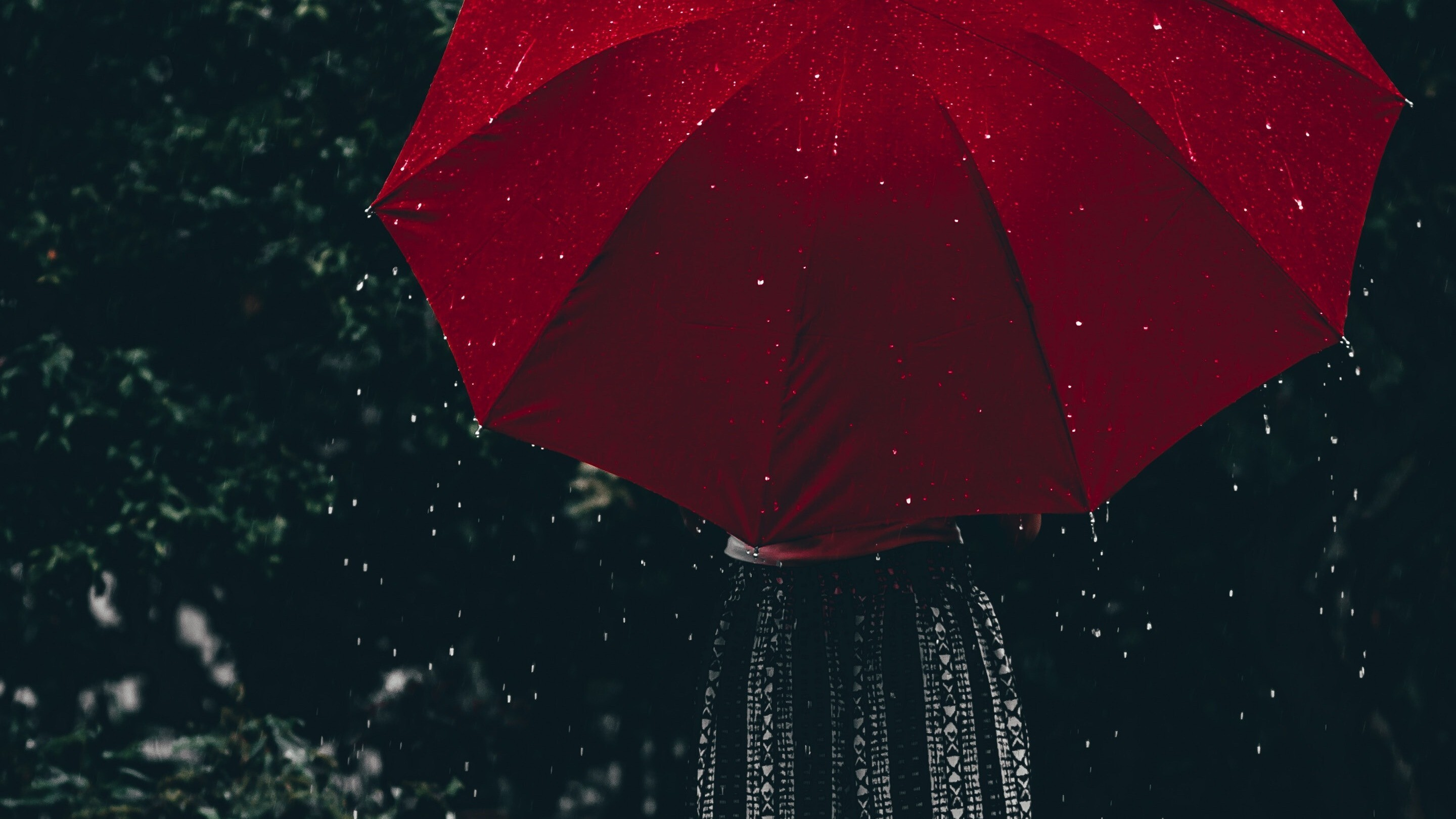 Woman Holding Umbrella During Rain HD Photo