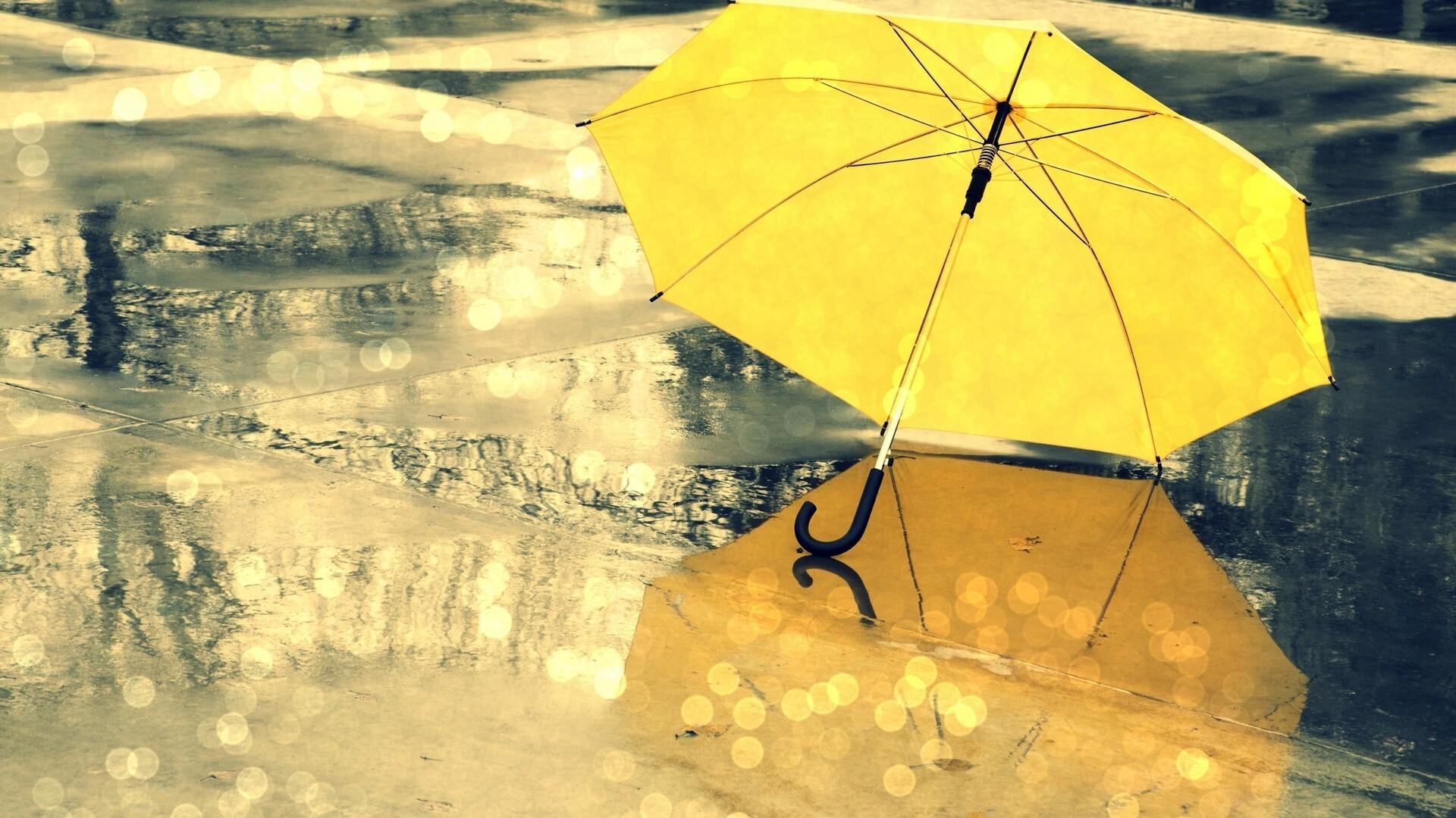 Yellow Umbrella During Rain Season Wallpaper   HD Wallpapers