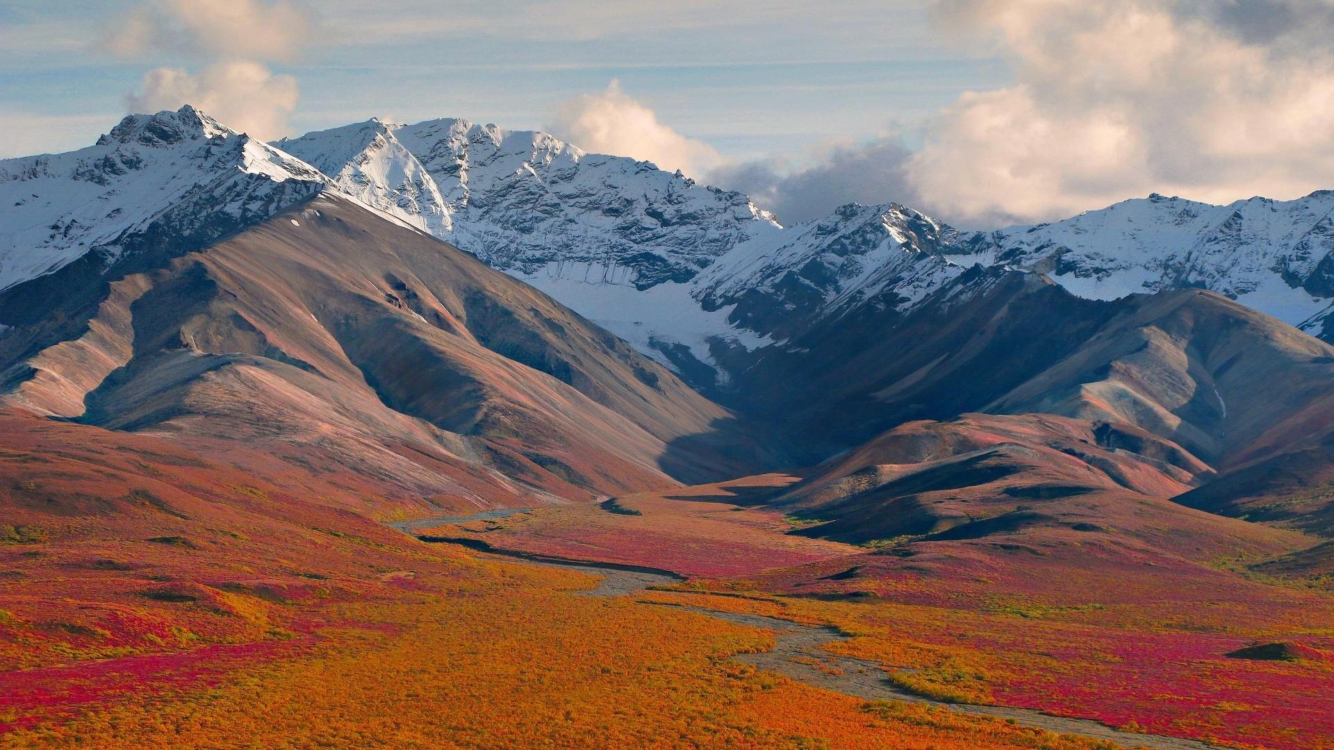 Denali National Park Mountain View In Alaska United States Wallpaper