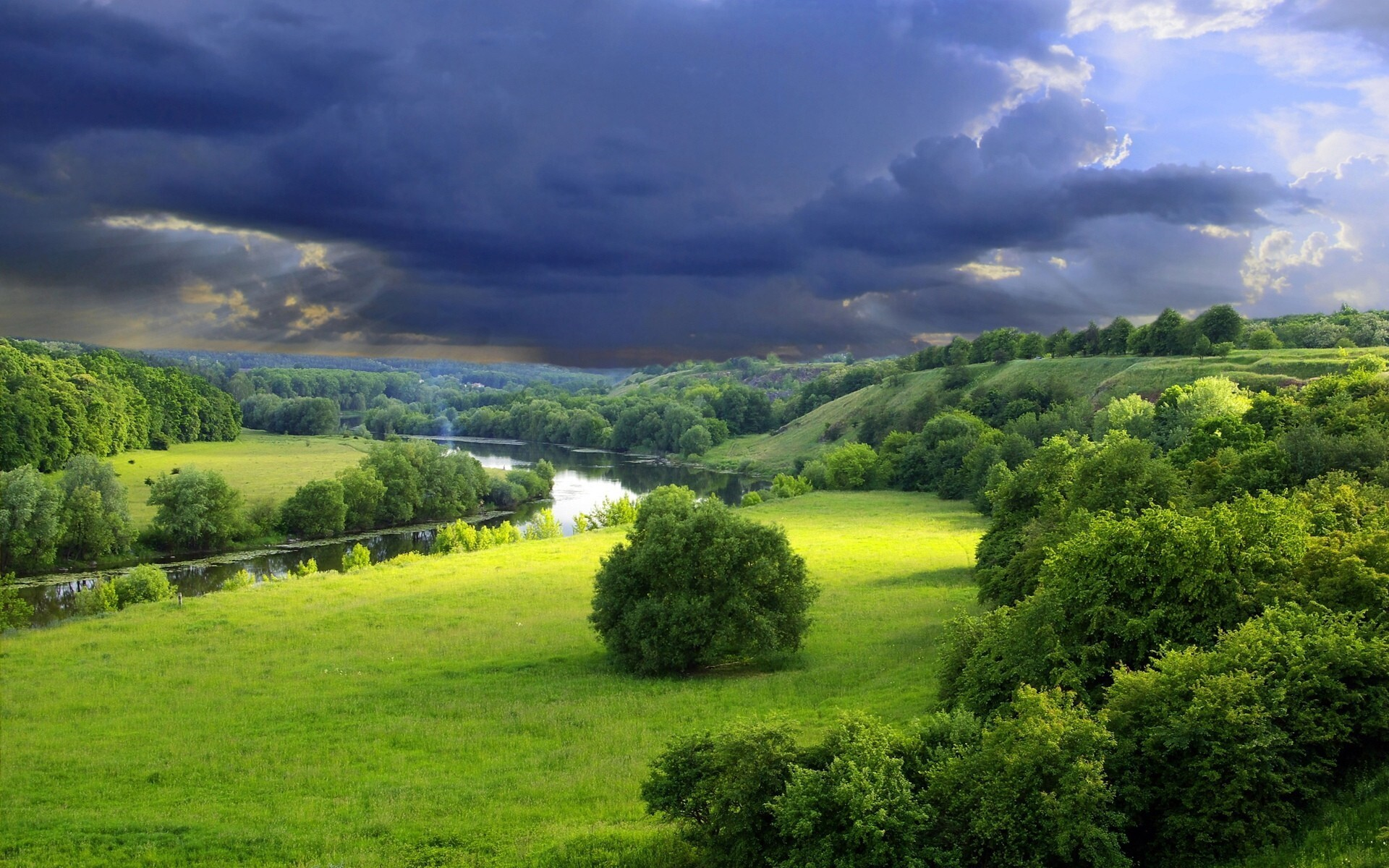 Amazing Green Nature Landscape Image Download  HD Wallpapers