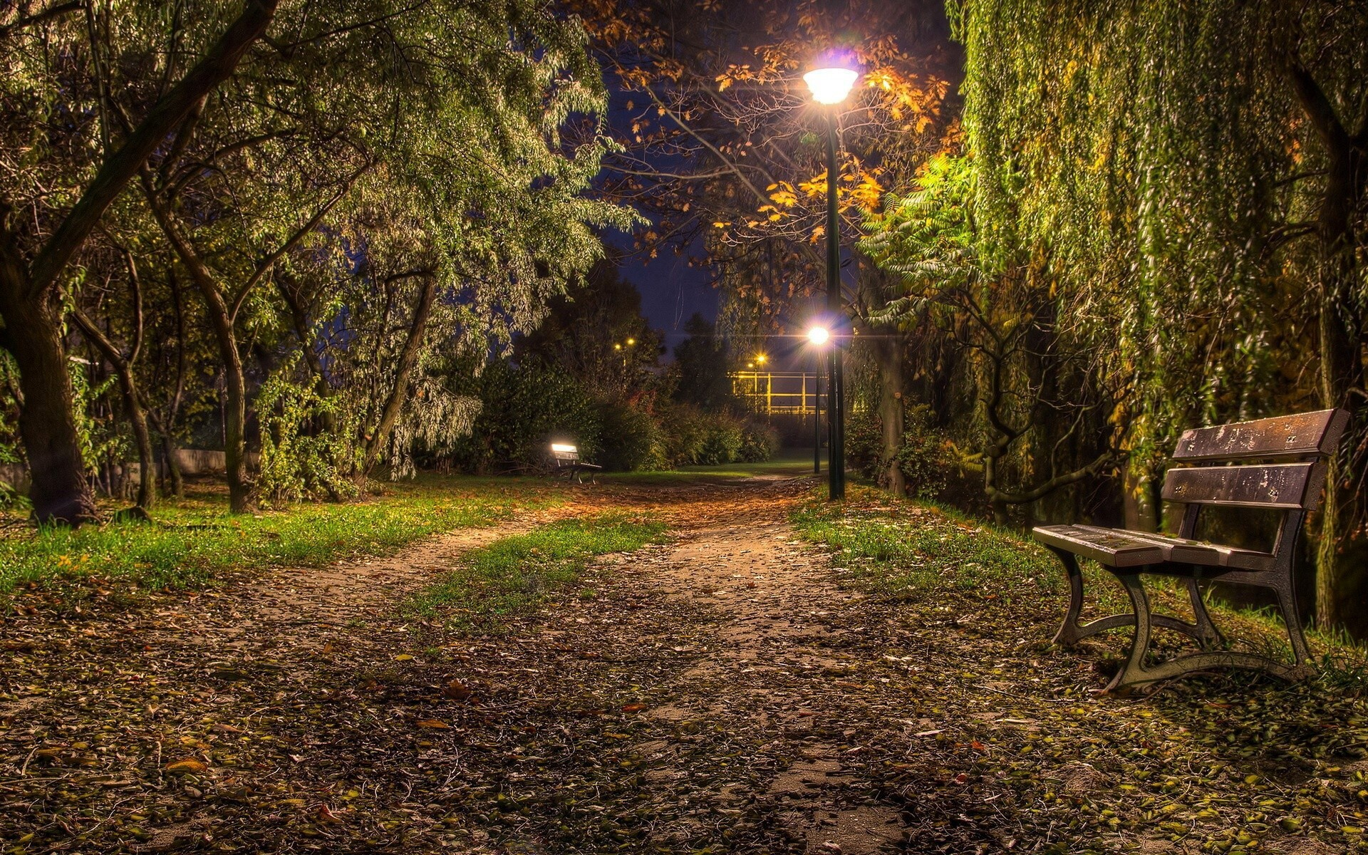 Nature Night Look And Bench Fantacy Wallpapers Hd Wallpapers