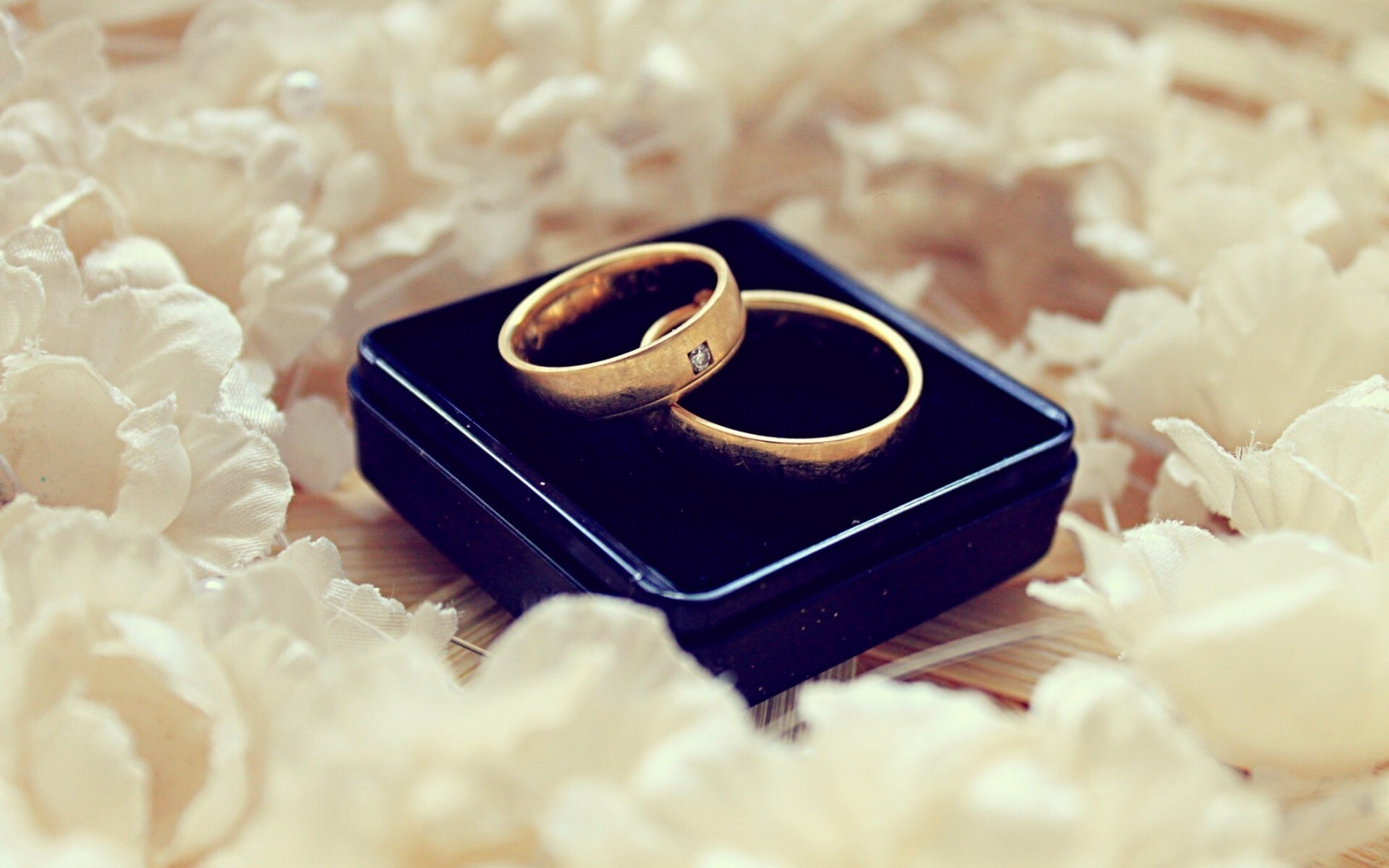 Free Wedding Ring 51 Trend Others Wallpapers Previous Wallpaper