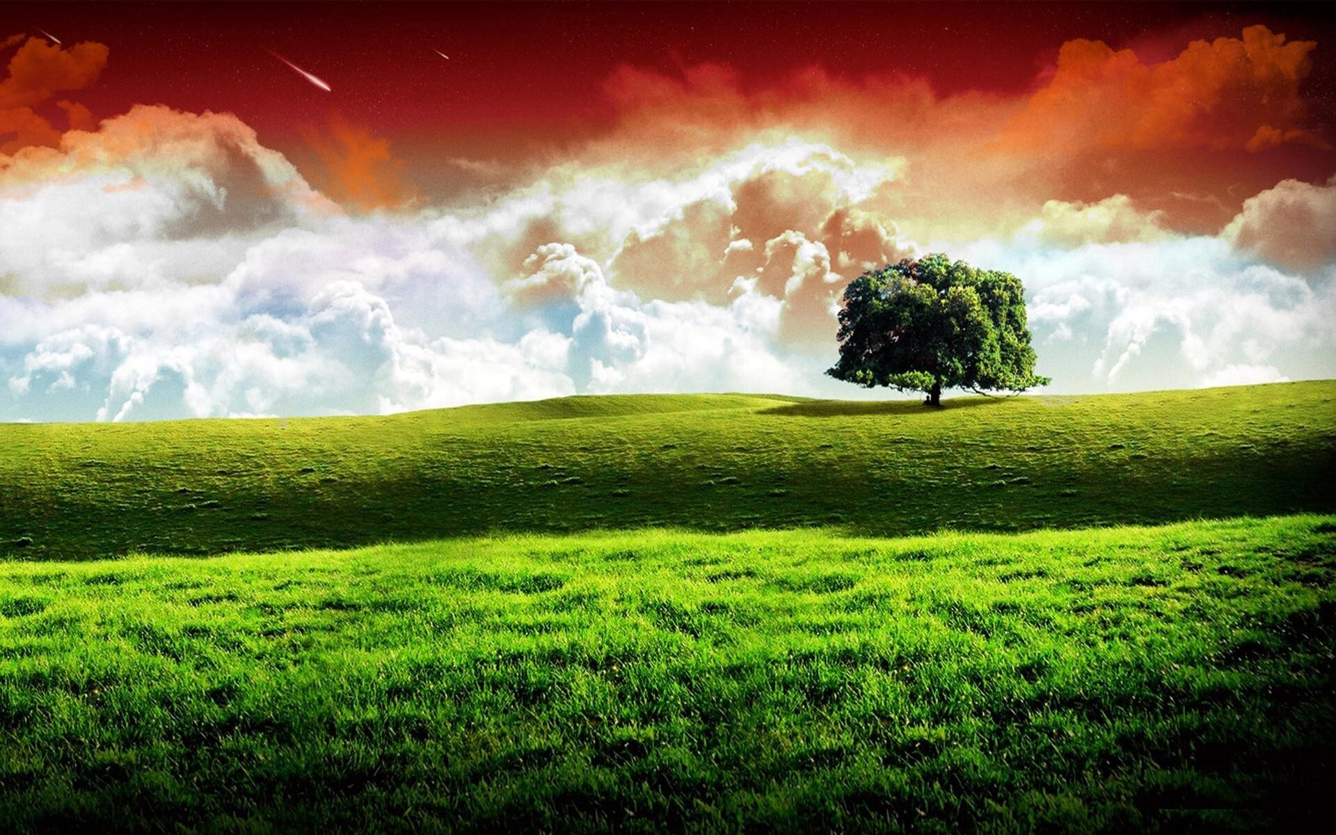 Indian Republic Day Nature Wallpaper