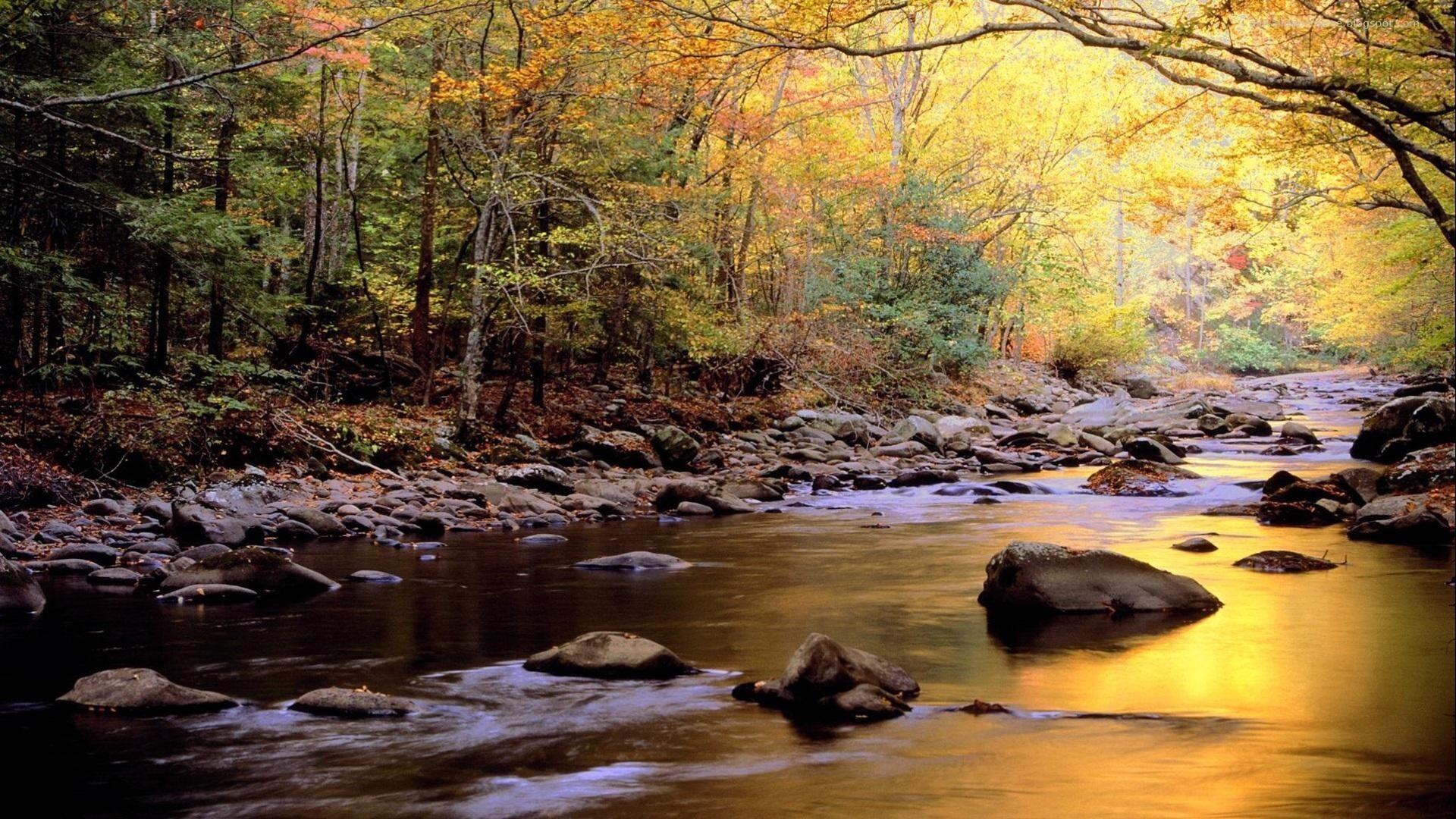 Hd wallpaper river - River Wallpapers