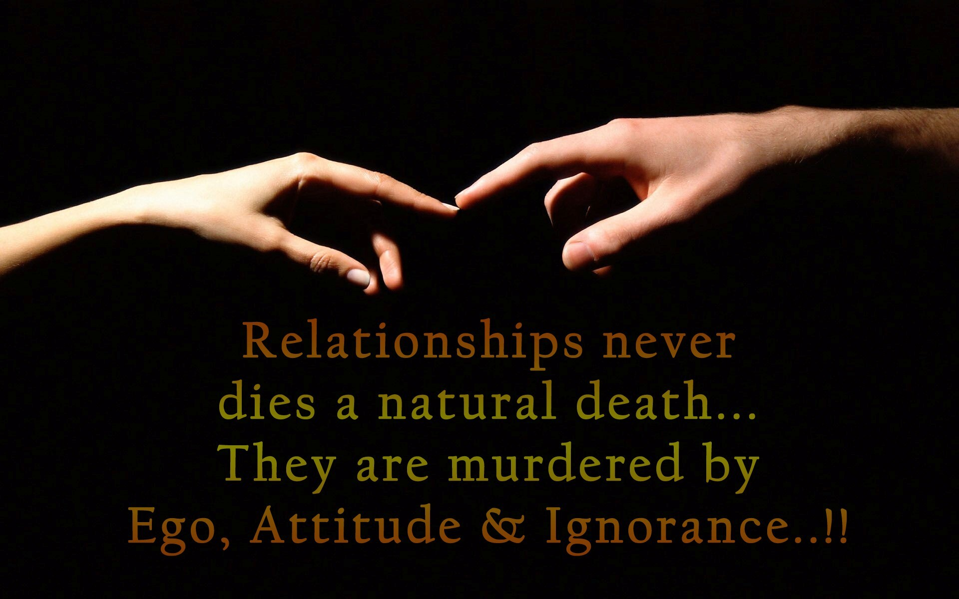 Beautiful Relationship High Definition Quotes Photo Background