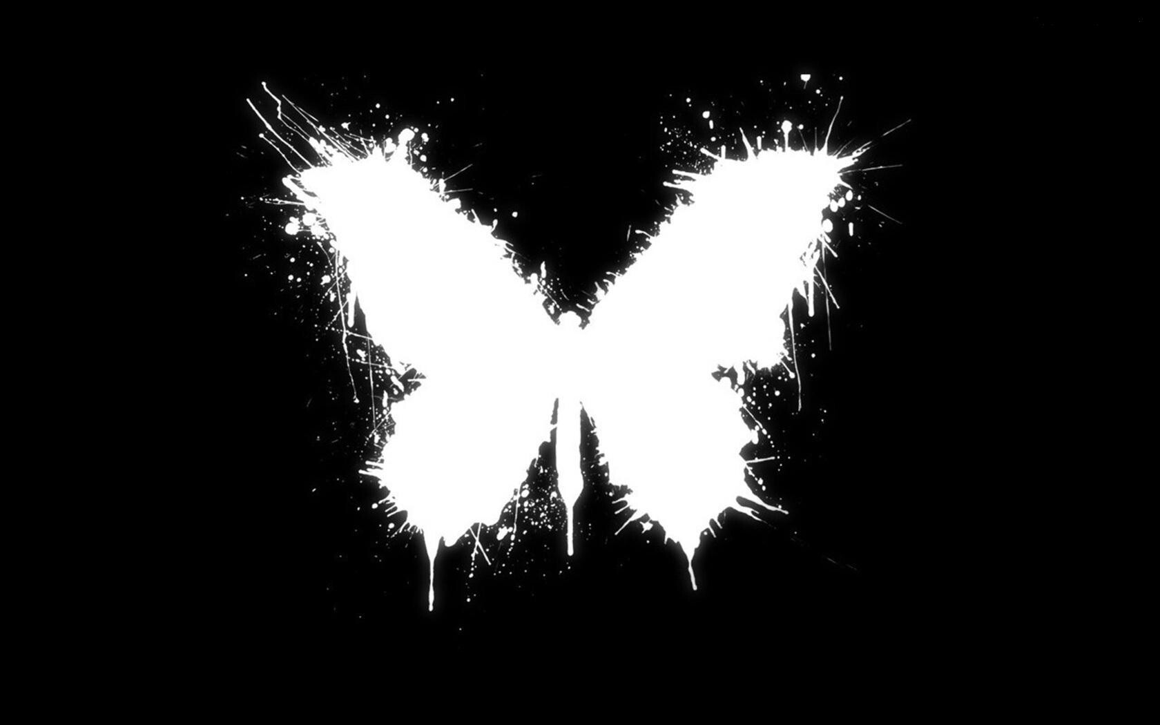 Butterfly Black Vector Design HD Wallpapers | HD Wallpapers