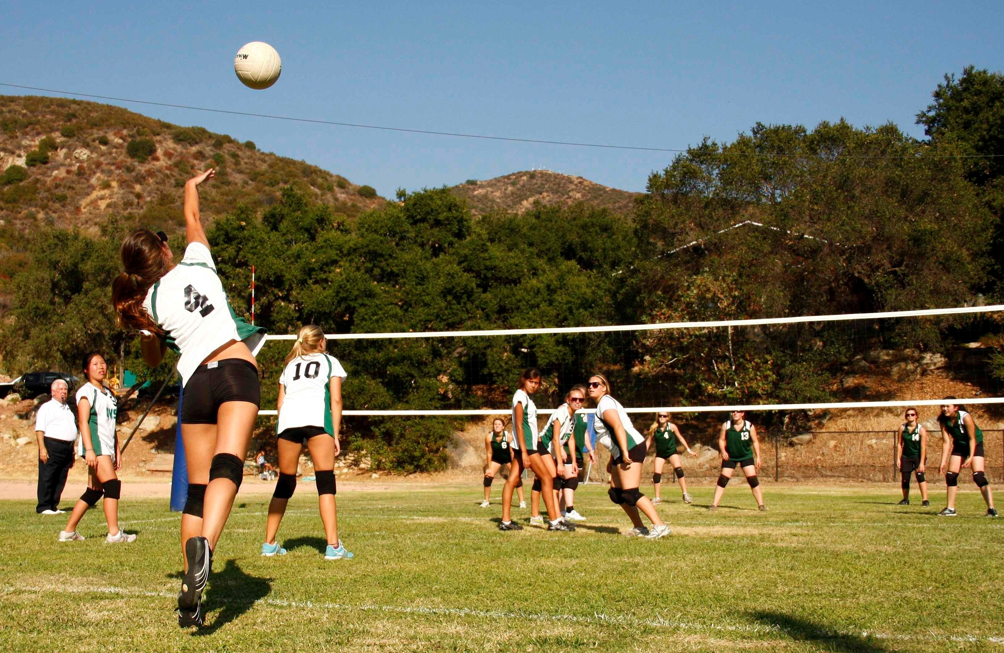 Volleyball In Garden Wallpapers Hd Wallpapers