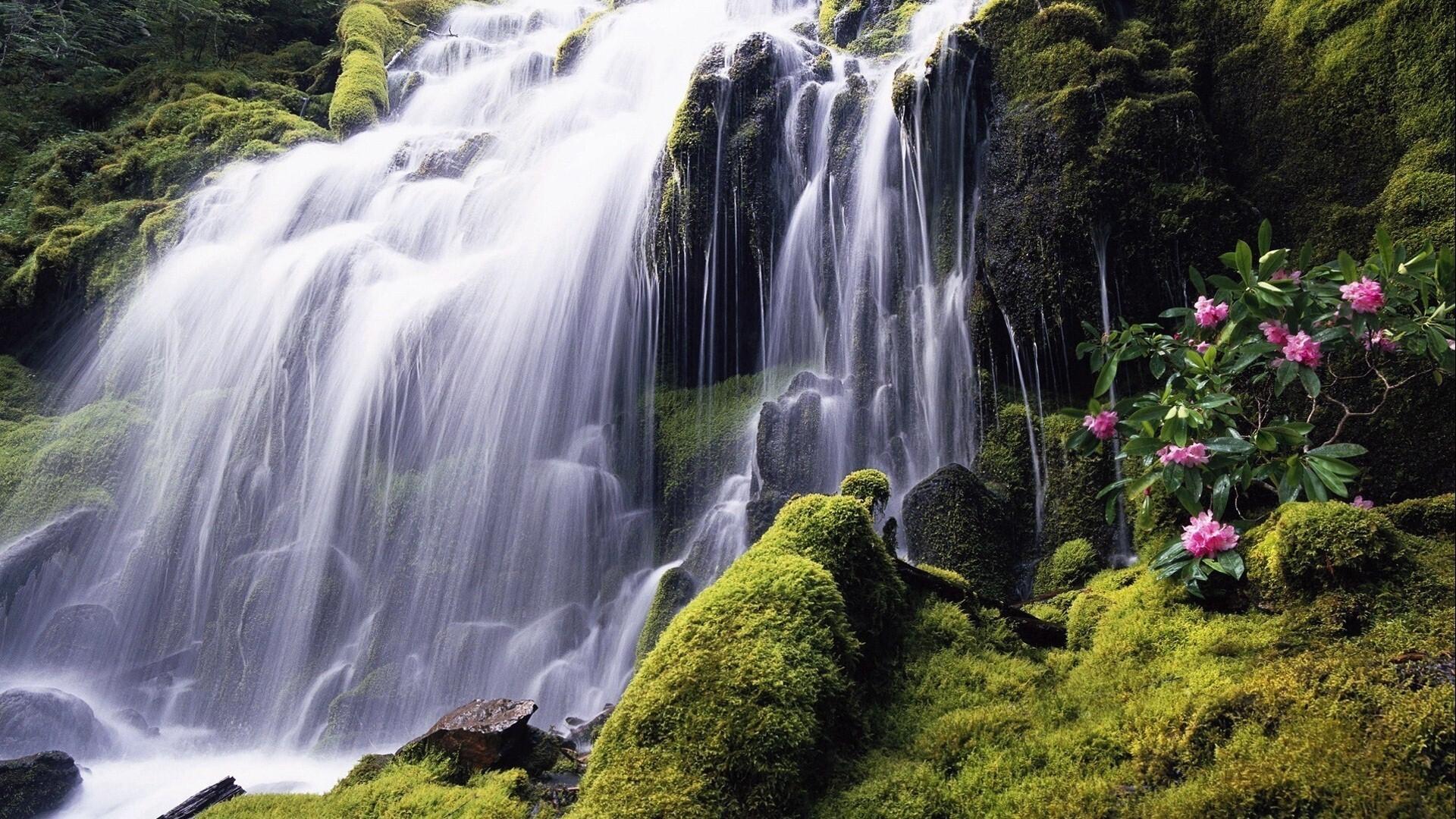 Beautiful Waterfall Of Manila Philippines Wallpaper Hd