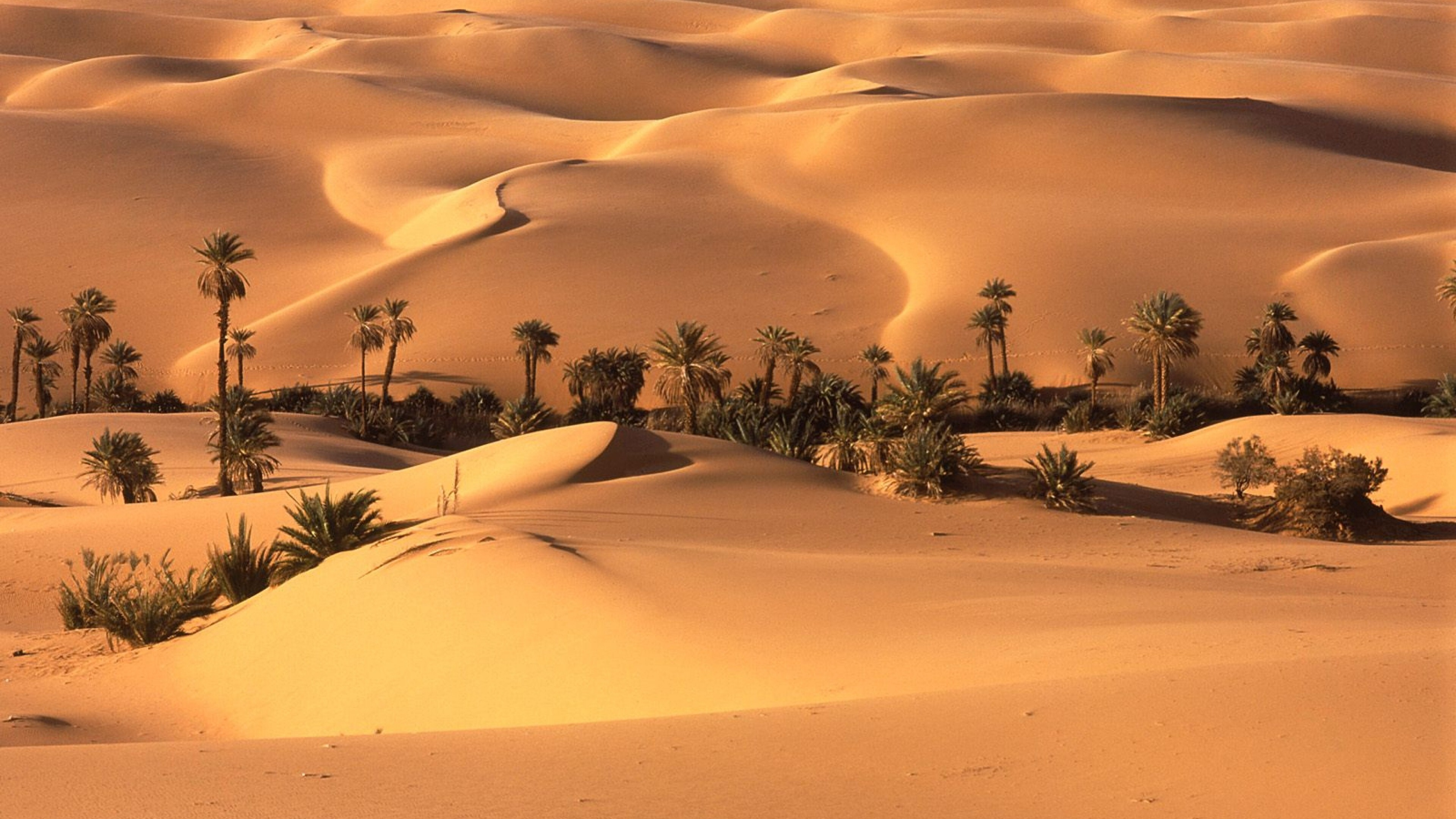 Beautiful Sahara Desert North Africa Wallpaper Hd Wallpapers