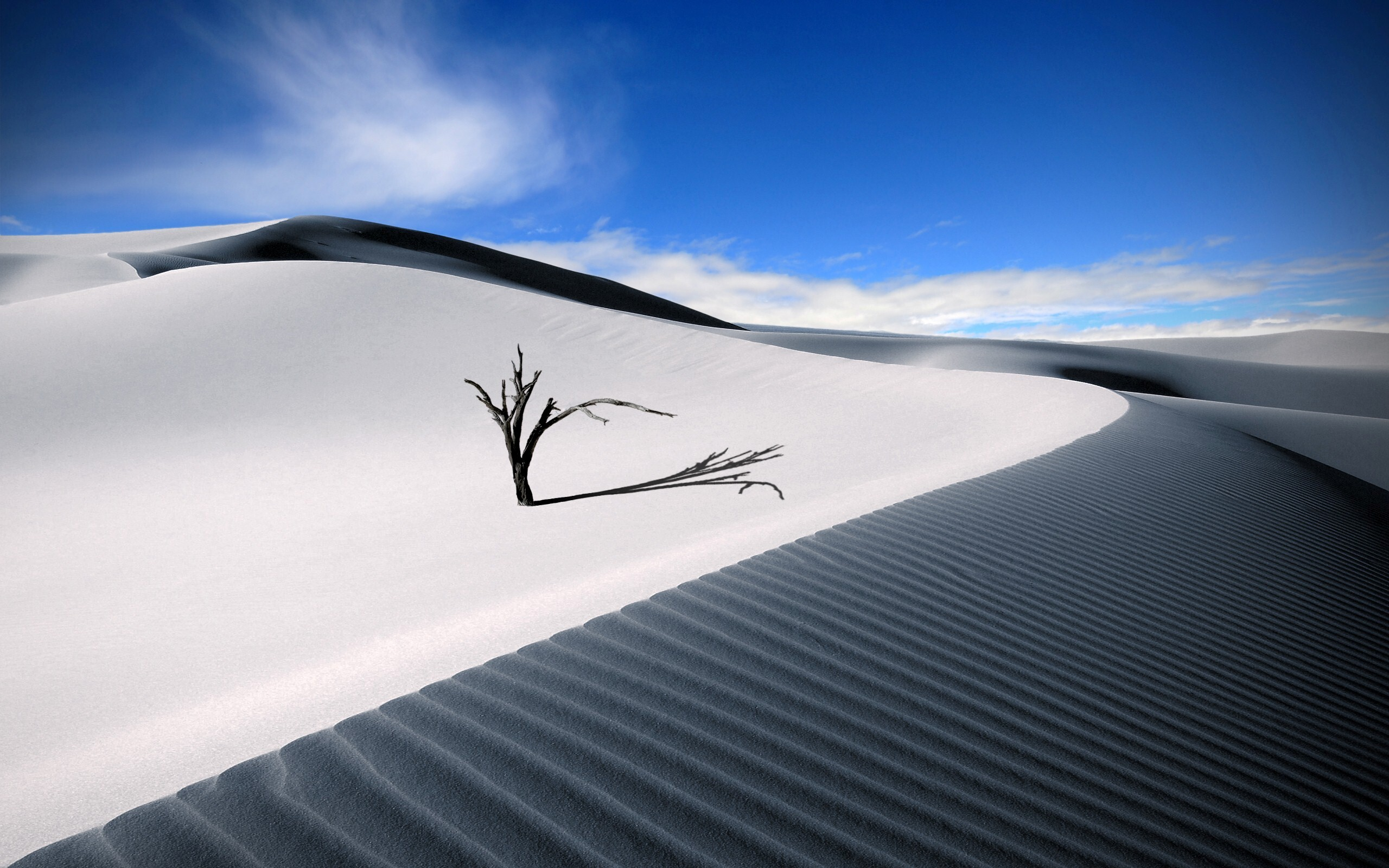Sahara White Largest Desert HD Wallpapers