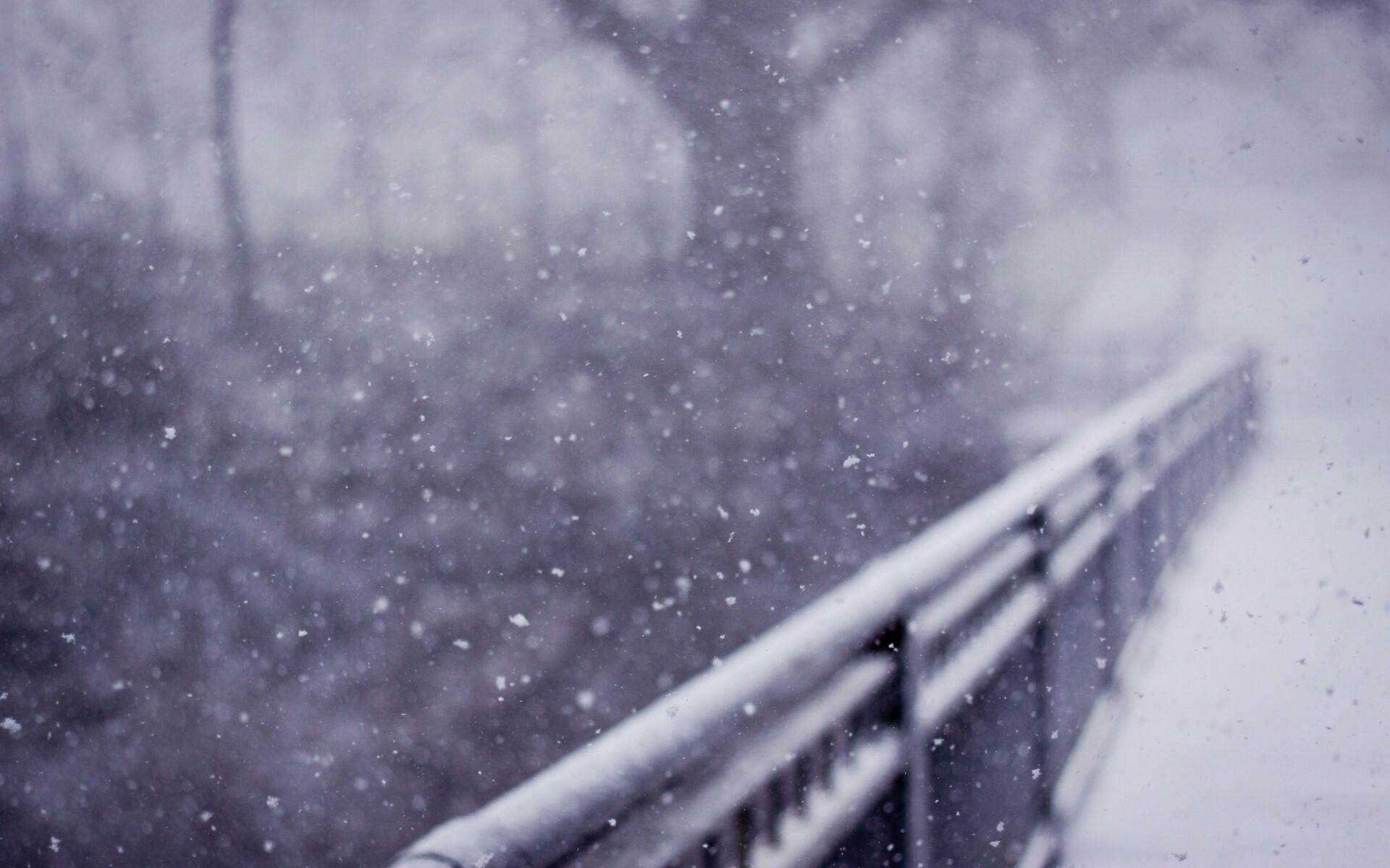 Beautiful Snow Rain In Winter