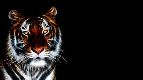 4K Pic of 3D Tiger