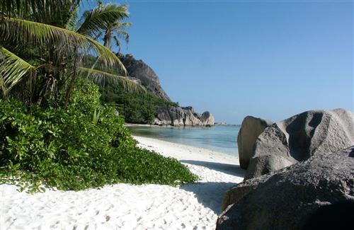 Amazing Beach and Stone