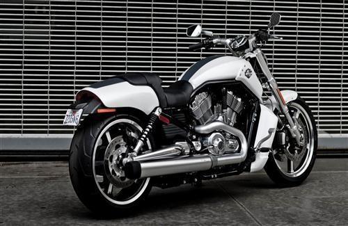 Harley Davidson V Rod Muscle White Motorcycle