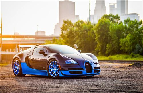 Bugatti Veyron Blue and Black Car