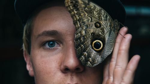 Replace Butterfly Eye to Person Eye Creative Photo