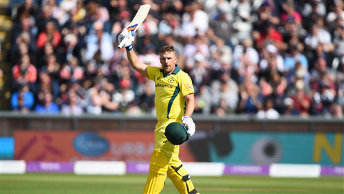 Aaron Finch in World Cup 2019 After Hundred 4K Wallpaper