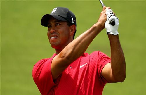 Tiger Woods Golf Player HD Wallpaper