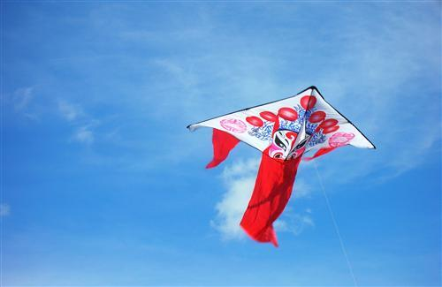 Different Beautiful Kite on Sky