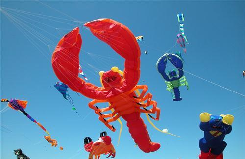 Scorpio Latest Different Style Kites in Makar Sankranti Indian Festival HD Wallpapers