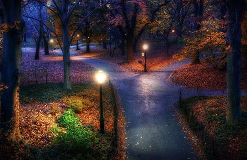 Nature Night View Look Hd Wallpapers