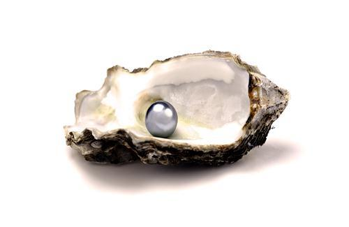 Beautiful Pearl in Sea Shell