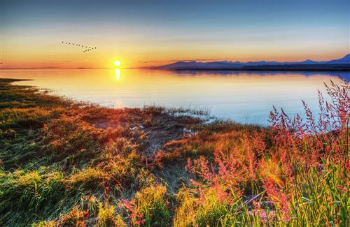 Beautiful Summer Sunrise Wallpapers