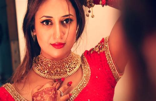 TV Actress Divyanka Tripathi in Saree Photo